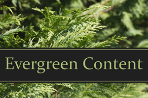 SEO Basics: Evergreen Content